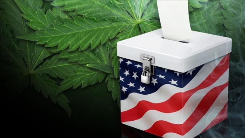 marijuana+vote+(redesign)