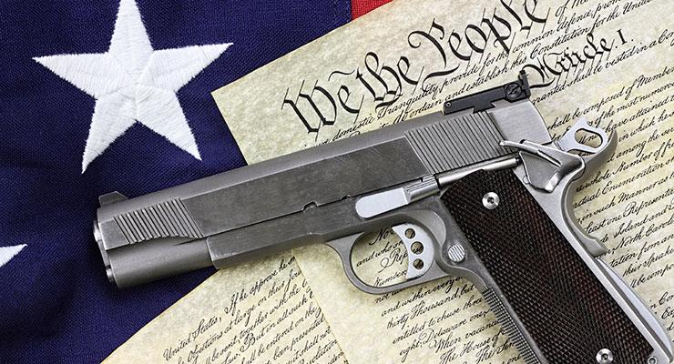 Gun Control - Michelle Friore