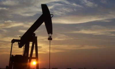 Working oil pump